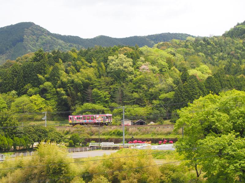 shikoku30